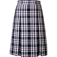 Arlington Plaid Box Pleated Skirt