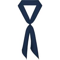 Navy Neck Tie