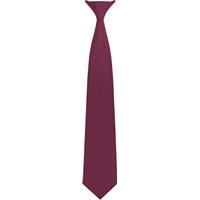 Wine Clip-On Neck Tie