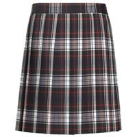 Lloyd Plaid Knife Pleated Skirt