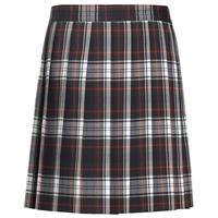 Lloyd Plaid Knife Pleated Skirt