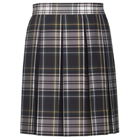Carden Plaid Box Pleated Skirt