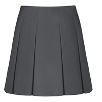 Dark Grey Pleated Skirt