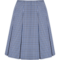 Blue/Black/White Check Pleated Skirt