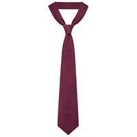 Wine Neck Tie