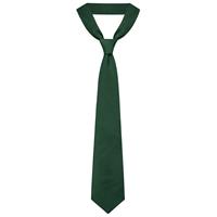 Green Neck Tie