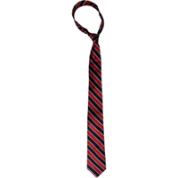 Albury Stripe Neck Tie