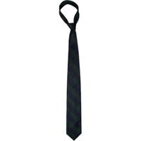 Navy/Dark Green Neck Tie