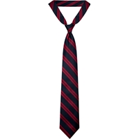 Hampshire Navy with Red Stripe Neck Tie