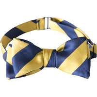 Self Tie Bow Tie-Gold/Navy