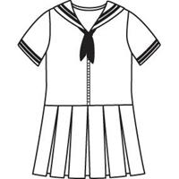 Navy Dress With White Trim with School Logo