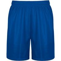 Royal Mini Mesh Athletic Shorts